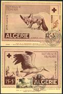 1957, CROIX ROUGE; RED CROSS; ROTES KREUZ - Algerien, Fox, Fuchs, Renard, Stork, Storch, Cigne - Maxi Card - Rotes Kreuz
