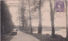 Yvelines  Ou  Seine Et Marne : POIGNY :  étang  De  Guiperreux , Voiture - France