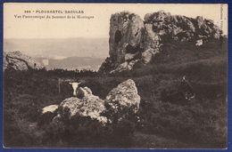 29 PLOUGASTEL-DAOULAS Vue Panoramique Du Sommet De La Montagne - Plougastel-Daoulas