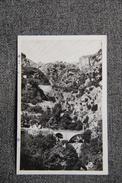 TLEMCEN - Les Cascades Du Meffrouch - Tlemcen