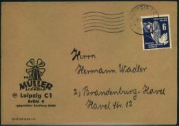 1951, 6 Pfg. Frieden Auf Drucksache Ab LEIPZIG . - DDR