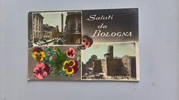 CARTOLINA SALUTI DA BOLOGNA - Bologna