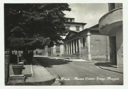 CHIUSI - MUSEO CIVICO LARGO MAZZINI  VIAGGIATA FG - Siena