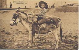 Blankenberge, Promenade à âne (Wandeling Op Het Strand Met Ezel)  --> Beschreven 1912 - Blankenberge