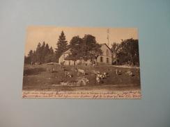 Le Chalet Du Mont De Baulmes - St. Croix 1906 (206) - VD Vaud