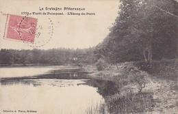 CPA Forêt De Paimpont - L'Étang Du Perré - 1908 (30460) - Paimpont