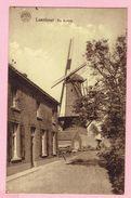Loenhout - De Molen - Hoogstraten