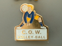 PIN´S  VOLLEYBALL - C.O.W - Volleyball