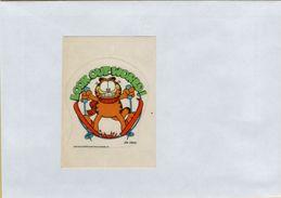 141209  Vecchia Figurina PANINI GARFIELD  NUMERO 58 - Sports