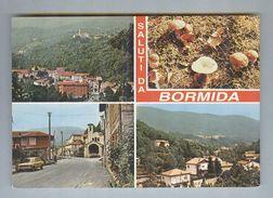 BORMIDA..VEDUTINE..FUNGHI...SAVONA...LIGURIA - Italie