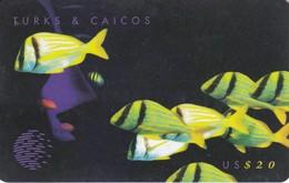 TARJETA DE TURKS & CAICOS DE $20 VIDA SUBMARINA (PEZ-FISH) PUZZLE - Turks And Caicos Islands
