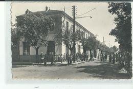 ALGERIE ,LE TARF , L'Hôtel Et Grande Rue - Algérie