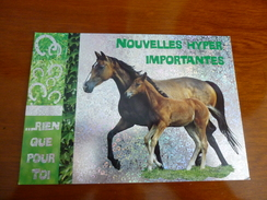 °°°°CARTE POSTALE    Neuve   CHEVAL / CHEVAUX / HORSES / PFERD - Pferde