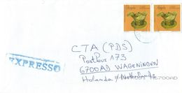 Angola 2003 ECP Luanda Pottery Express Cover - Angola