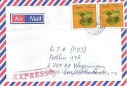 Angola 2008 ECP Luanda Pottery Express Cover - Angola