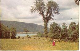 Whycocomagh-a Beautiful Little Village-cape Breton -canada-cpsm - Cape Breton