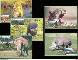 National Parks 2007 Set Indian Max Cards Maximum Mammals Wild Life Animals Tiger Leopard Elephant Rhino Rhinoceros Bison - Big Cats (cats Of Prey)