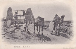 TUNISIA - PUITS ARABE - Tunisia