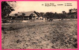 EP N° 45 - Série N° 43 - De Kambove - Congo Belge - Lusambo - Le Labourage - Animée - 10 Cts Carmin Sur Carton Chamois - Interi Postali