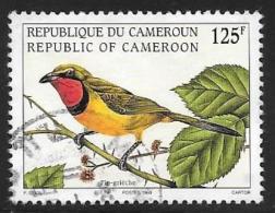 Cameroun, Scott # 926 Used Bird, 1998 - Cameroon (1960-...)