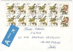 BELGIO - BELGIE - BELGIQUE - 1996 - 10 X 0,50F + 2 X 5,50F - Birds - A Prior - Viaggiata Da Marneffe Per Torino, Italie - 1985-.. Uccelli (Buzin)