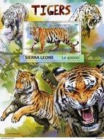 SIERRA LEONE 2017 SHEET TIGERS TIGRES WILD CATS RAUBKATZEN FELINS FELINES FELINOS FELINI WILDLIFE Srl17303b - Sierra Leone (1961-...)
