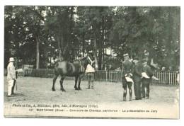 18253   CPA    MORTAGNE  ; Concours De Chevaux Percheron - La Présentation Au Jury !  1919 - Mortagne Au Perche