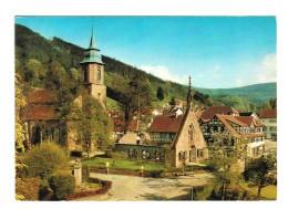 18269    CPM    BAD HERRENALB   Carte Photo  1979 - Bad Herrenalb