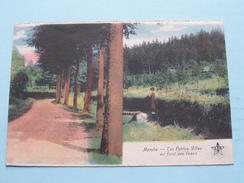 MARCHE - Les Petites Villas Au Fond Des Veaux ( Doppagne ) Anno 1927 ( Zie Foto Voor Details ) !! - België
