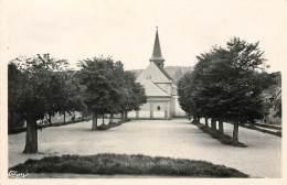 Dep - 23 - AUBUSSON L'église - Aubusson