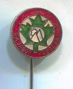 Alpinism, Mountaineering, Climbing - PD JAVOR, Belgrade Serbia, Vintage Pin, Badge, Abzeichen, Enamel - Alpinism, Mountaineering