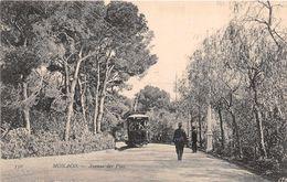 MONACO  -  Avenue Des Pins ( Avec Tramway ) - Monaco