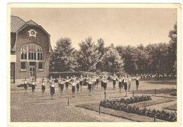Kalmthout - Colonie Kinderwelzijn Calmpthout - Turnoefeningen - Groot Formaat - Kalmthout