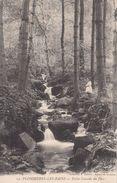 Cp , 88 , PLOMBIÈRES-les-BAINS , Petite Cascades Du Parc - Plombieres Les Bains