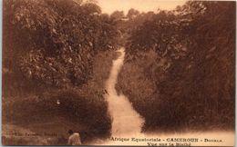 AFRIQUE - CAMEROUN - DOUALA - Vue Sur La Bisiké - Cameroon