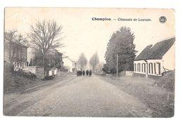 Champion Environs Namur Chaussée De Louvain Animée Hermans - Namur