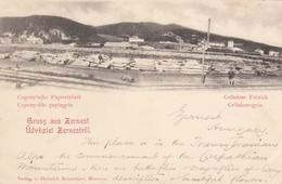 Gruss Aus Zernest - Cellulose-Fabrick - Celluloze-gyar - Registered Shipping Only - Roemenië
