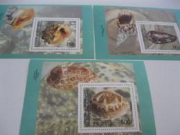 Comoros Comores-1992-fauna-marine Life-shells-MI.BL.362-364 - Comoros