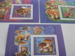 Comoros Comores-1992-fauna-marine Life-shells Mushrooms-bl.358-361 - Comoros