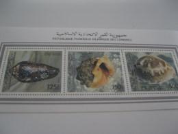 Comoros Comores-1992-fauna-marine Life-shells -klb-MI.985B-987B - Comoros