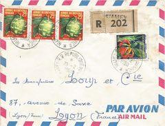 Niger 1960 Niamey AOF Fruit Flower Registered Cover - Niger (1960-...)