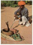 (100) India - Snake Charmer - Autres