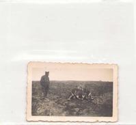PHOTO DE MILITAIRES SOUVENIR DE AVRIL 1940 A WISSEMBOURG7 X 4.5 CM - Guerre, Militaire