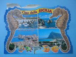 Ciao Dalla Sicilia - Vedute - Marsala Scopello Castellammare Del Golfo S. Vito Lo Capo - Cavallucci Marini E Pesci - Sin Clasificación