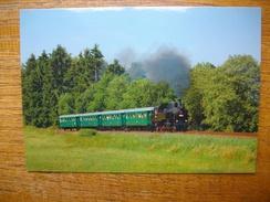 Trains Europe De L'est , Locomotive Rady 423.009 - Trains