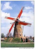 PULDERBOS Bij Zandhoven (Antw.) - Molen/moulin - De Stenen Bergmolen In 1996, Na De Restauratie Opgezeild En In Werking. - Zandhoven