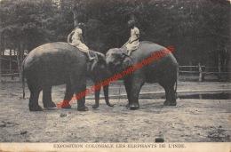 Exposition Coloniale - Les Elephants De L'Inde - Éléphants