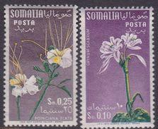 Somalia Scott 217 And 219 1959 Flowers 10c And 25c, Mint Never Hinged - Somalie (AFIS)