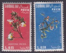 Somalia Scott 218 And 220 1958 Flowers 15c And 50c, Mint Never Hinged - Somalie (AFIS)