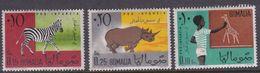 Somalia Scott 245-247 1960 Animals, Mint Never Hinged - Somalie (AFIS)
